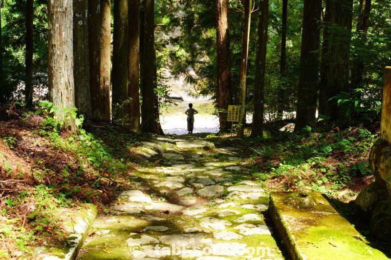 大森神社から川へ